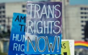 Trans_Rights_Now